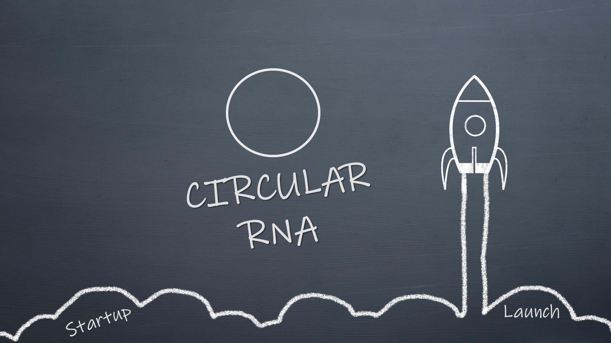 Laronde Launches to Disrupt the Industry with Programmable Circular RNA Therapies