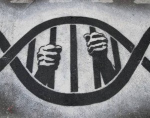 violent gene