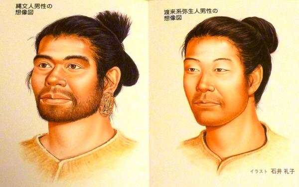 绳文人与弥生人之比较图。来源:http://blogs.yahoo.co.jp/narusara_ikiru/33016798.html