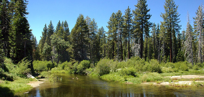 800px-general_creek_at_sugar_pine_point_state_park