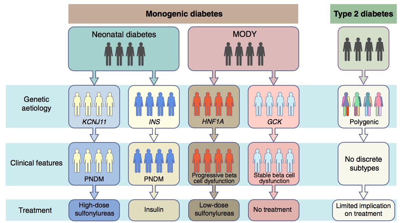 圖一:分子遺傳學分析法(Molecular genetics-based approach)示意圖