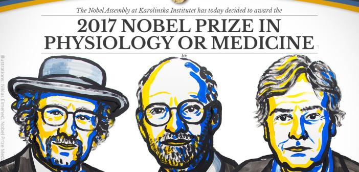 圖片來源: Nobelprize.org
