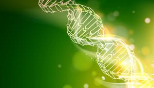 DNA chain.