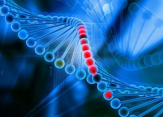 免疫治療前的關鍵診斷 次世代定序檢測微衛星體不穩定性