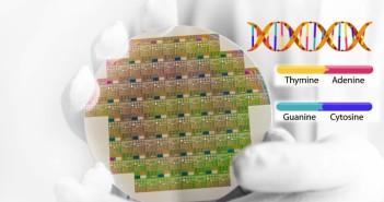 DNA Silicon