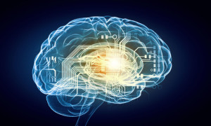 45915602 - concept of human intelligence with human brain on blue background