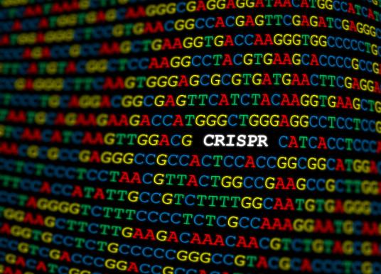 打擊癌症再出招,用CRISPR篩出PARP抑製劑的耐藥性基因