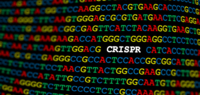 CRISPR locus on DNA sequence with colored letters