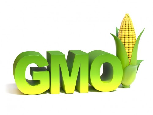 37385356 - gmo genetically modified food 3d concept