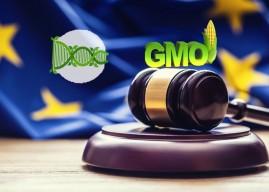 歐盟從嚴管制基因編輯農作物 產學一片哀嚎!