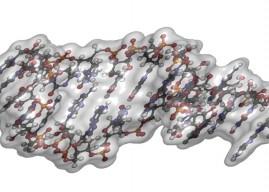 全球第一! RNAi 藥物獲 FDA 核准