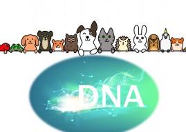 寵物基因檢測,仍有待步上軌道