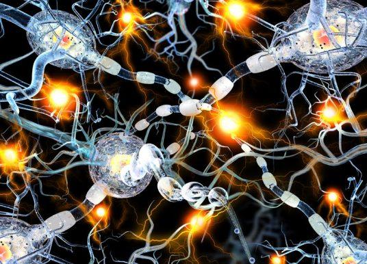 神經膠質細胞變殭屍細胞? 恐引發阿茲海默症