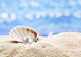 新興藥物資料庫《DrugCentral》 助人從砂礫中挑珍珠