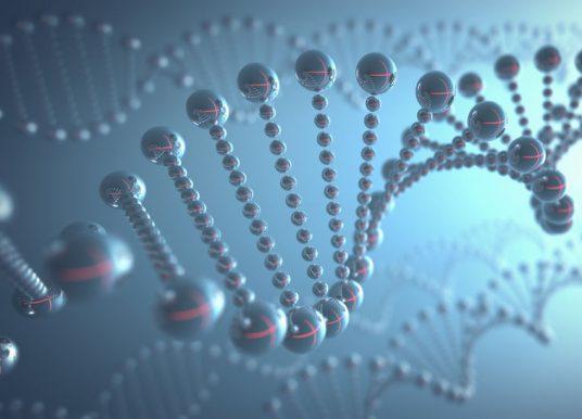 抗發炎新抑制劑 從基因修復下手