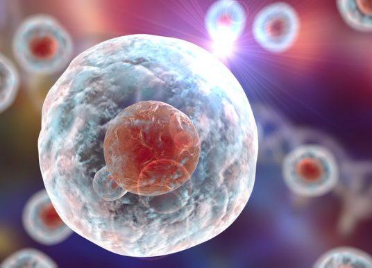 Janssen 攜手 Celsius 單細胞基因定序納入其藥物臨床試驗