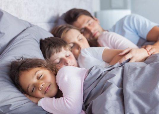 提升染色體動力學 睡眠有助於DNA修復