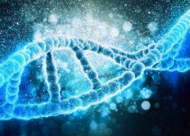 CRISPR 編輯癌細胞基因抗腫瘤 首次人體臨床試驗指日可待?