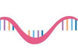癌细胞照妖镜! miRNA 甲基化可望成新检测标记