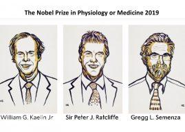 2019 年諾貝爾生理或醫學奬:一探細胞運用氧氣的奧秘!