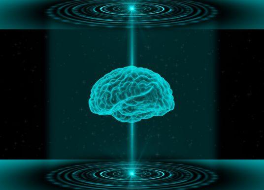 腦腫瘤微環境 3D 模型誕生 非侵入性監測藥物作用