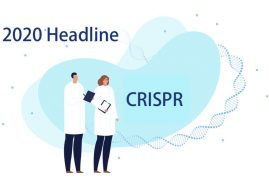 《Science》預測 2020 年生醫頭條: CRISPR 臨床結果與其異種移植應用