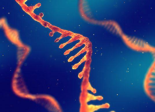 RNA療法全球概況