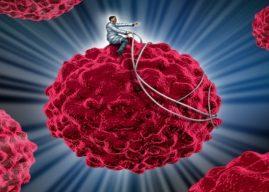 癌症免疫療法新進展:樹突細胞可望成為免疫療法的 Biomarker