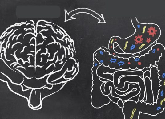 大脑如何直接调控胃?高压容易胃溃疡大解密?