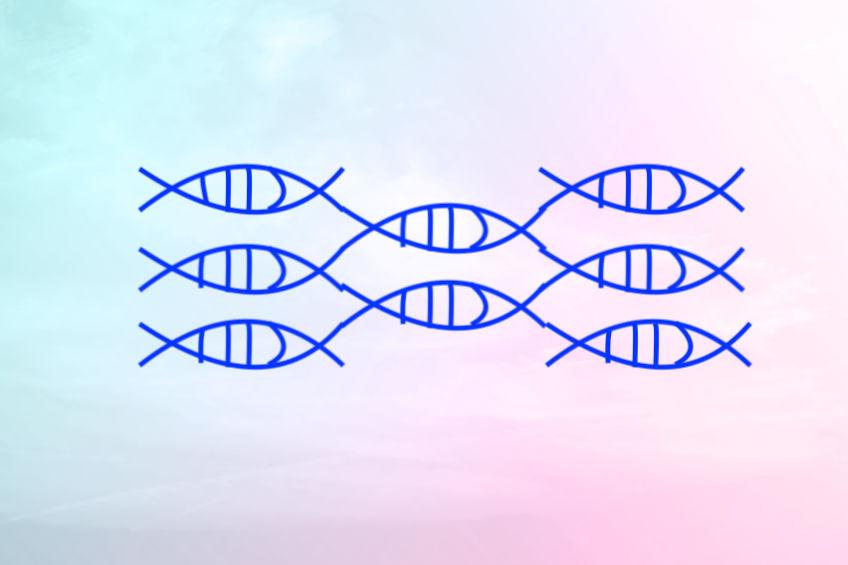 正常 DNA 修復竟然也會致癌?抗病毒大將 APOBEC 是幫兇?