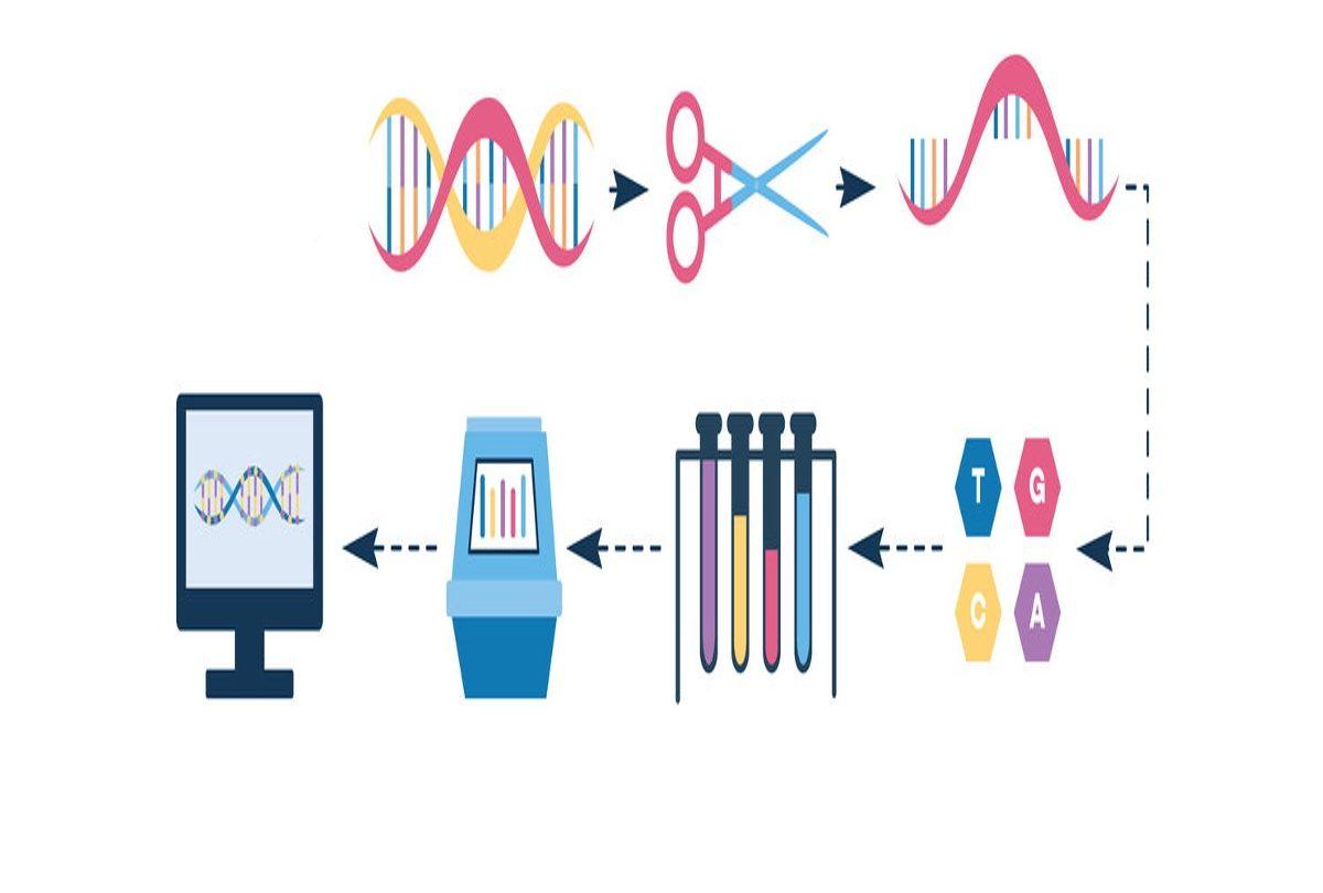 Qiagen 完全收購 NeuMoDx!完善 PCR 診斷自動化系統